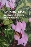 Adverbs: Syntax and Meaning Studies in Contemporary Hebrew